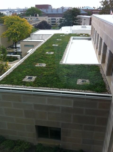 Gal-Siplast Paragreen at Harvard Law School